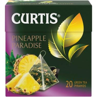 CURTIS Pineapple Paradise - Zeleni čaj sa ananasom